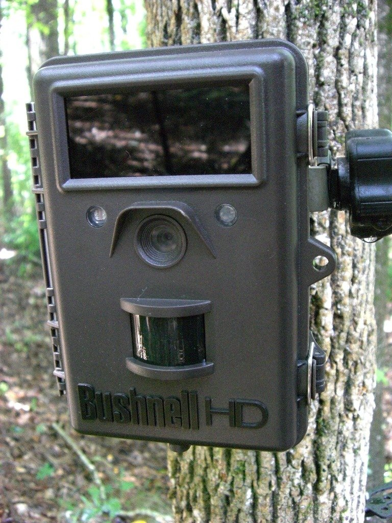 Bushnell 8MP 1