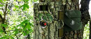 Trail Camera Home