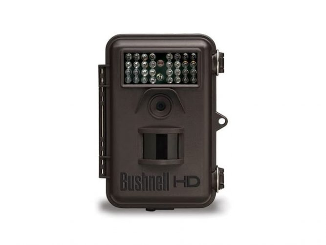 The Bushnell 8MP Trophy Cam Standard Edition